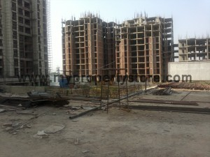 Ansal-Orchard-County-Olive Tower-Peach-Tower-Palm-Grove-Sector-115-Mohali (15)