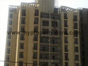 Ansal-Orchard-County-Olive Tower-Peach-Tower-Palm-Grove-Sector-115-Mohali (17)
