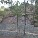 dlf-samavana-kasauli-development-work