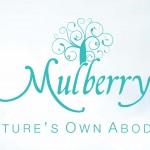 Mulberry Villa Omaxe New Chandigarh