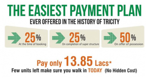 royal citi easiest payment plan