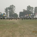 DLF Hyde Park-New Chandigarh-Mullanpur ,Mohali (3)