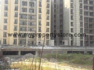 Ansal-Orchard-County-Olive Tower-Peach-Tower-Palm-Grove-Sector-115-Mohali (20)