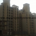 Ansal-Orchard-County-Olive Tower-Peach-Tower-Palm-Grove-Sector-115-Mohali (7)