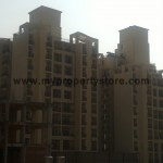 Ansal-Orchard-County-Olive Tower-Peach-Tower-Palm-Grove-Sector-115-Mohali (8)