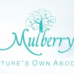 Mulberry Villa Omaxe New Chandigarh