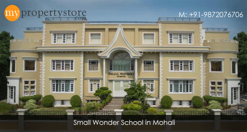 smart wonder school mohali